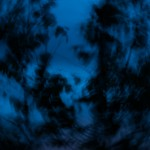 L'aube bleue